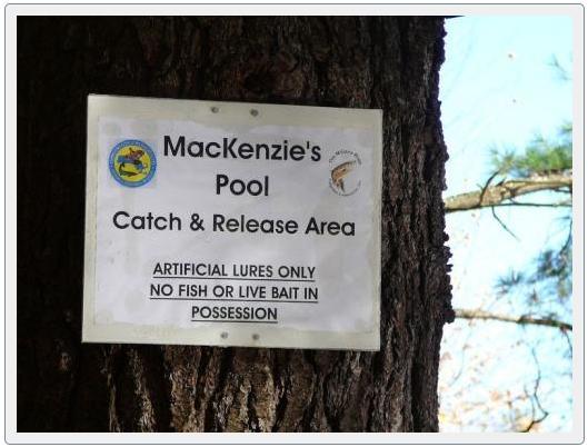 MacKenzie's Pool, Millers River